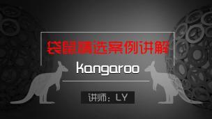 袋鼠kangaroo精选案例讲解